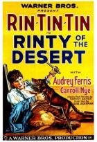 Rin Tin Tin na poušti
