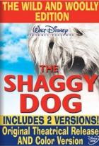 Chundelatý pes (The Shaggy Dog)