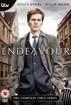 Detektiv Endeavour Morse (Endeavour)