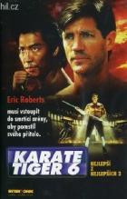 Karate tiger 6: Nejlepší z nejlepších 2 (Best of the Best 2)