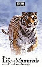 Život savců / Příběh o přežití (The Life of Mammals)