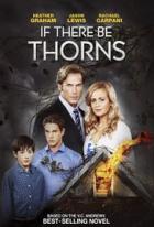 Život v hříchu (If There Be Thorns)