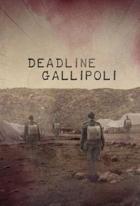 Bitva o Gallipoli