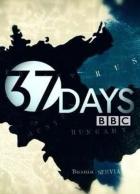 37 dní od atentátu k válce (37 Days)