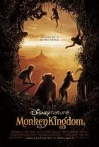 Království opic (Monkey Kingdom)
