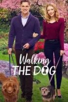 Cyklostezka k lásce (Walking the Dog)