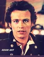 Adam Ant
