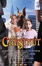 Roztomilý mazlíček (Chestnut: Hero of Central Park)