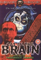 Koncert hrůzy (Un Gatto nel cervello)