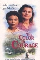 Barva odvahy (The Color of Courage)