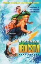 Bláznivé dědictví (Surf Ninjas)
