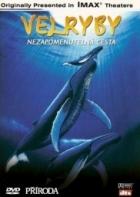 Velryby: Nezapomenutelná cesta (Whales: An Unforgettable Journey)