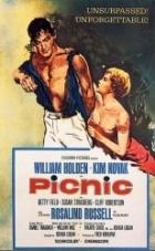 Piknik u cesty