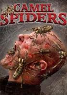 Pavouci útočí