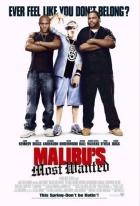 Nejhledanější v Malibu (Malibu's Most Wanted)