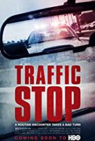 Silniční kontrola (Traffic Stop)