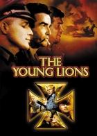Mladí lvi