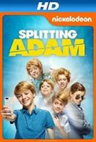 Rozdělený Adam (Splitting Adam)