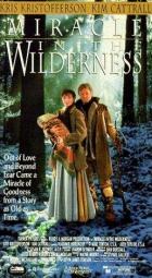Zázrak v divočině (Miracle in the Wilderness)