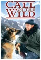 Volání divočiny (Call of the Wild)