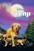 Hledá se Benji (Benji the Hunted)