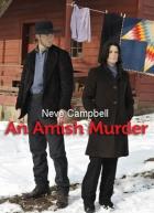 Slib mlčení (An Amish Murder)
