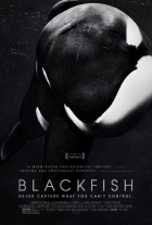 Kosatka (Blackfish)