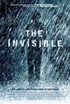 Přehlížený (The Invisible)