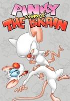 Neuvěřitelná dobrodružství Rudly a Koumáka (Pinky and the Brain)