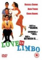 Láska, vášeň a limonáda (Love in Limbo)
