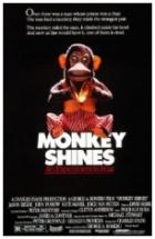 Vražedná opice (Monkey Shines)
