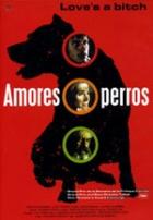 Amores perros – Láska je kurva (Amores perros)