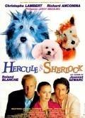 Hercule a Sherlock (Hercule et Sherlock)