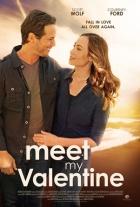 Perfektní shoda (Meet My Valentine)