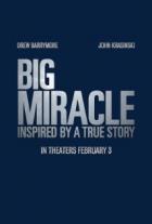 Máme rádi velryby (Big Miracle)