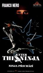 Ninja přichází (Enter The Ninja)