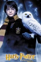 Harry Potter a Kámen mudrců (Harry Potter and the Sorcerer's Stone)