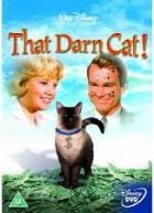 Zatracená kočka (That Darn Cat!)