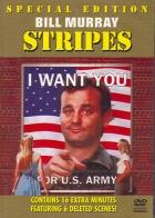 Lampasy (Stripes)
