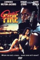 Tichý oheň (Quiet Fire)