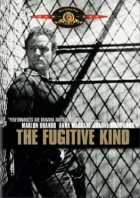 Sestup Orfeův (The Fugitive Kind)