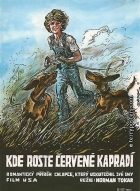 Kde roste červené kapradí (Where the RedFern Grows)