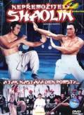 Nepřemožitelný Shaolin (Nan Shao Lin yu bei Shao Lin)
