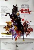 Černý Blesk (Black Beauty)