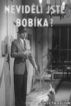 Neviděli jste Bobíka?