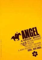 Angel a sedm koní (Haiducii lui Şaptecai)