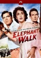 Sloní stezka (Elephant Walk)