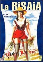 Rýžové pole (La risaia)