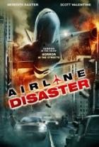 Únos letadla (Airline Disaster)