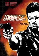 Náhodný cíl (Target of Opportunity)
